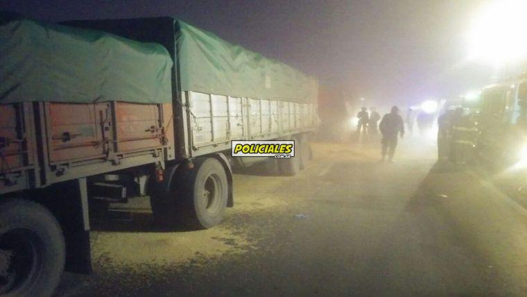 camiones2.jpg_1572130063